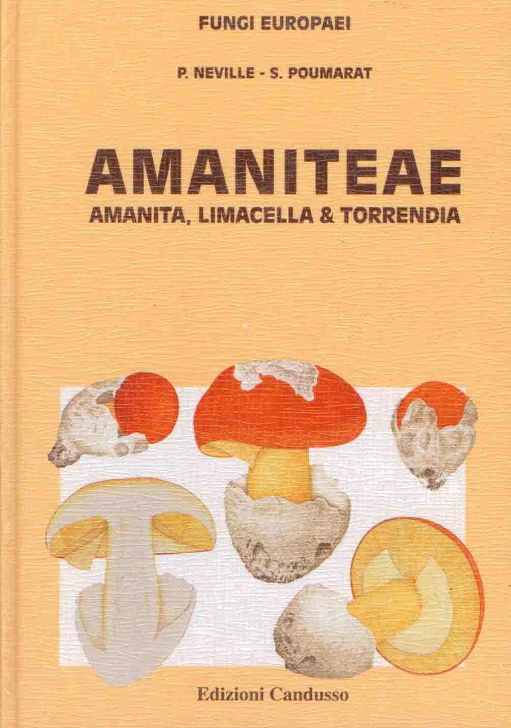 Amanita Limacella Torrendia Fungi Europaei 9 By Neville P Poumarat S