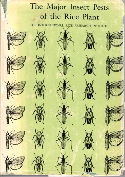 The Major Insects Pests Of The Rice Plant By International Rice Research Institute