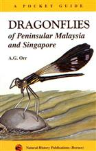 Dragonflies of Peninsular Malaysia and Singapore: A Pocket Guide