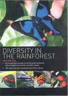 Diversity in the Rainforest