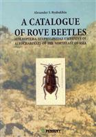 A Catalogue of Rove Beetles (Staphylinidae) exclusive of Aleocharinae of the Northeast of Asia