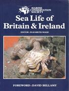 Sea Life of Britain and Ireland