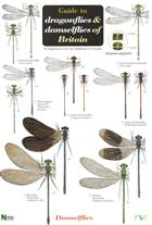 A Guide to the Dragonflies and Damselflies of Britain (Identification Chart)