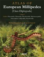 Atlas of European Millipedes (Class Diplopoda). Vol. 1: Orders Polyxenida, Glomerida, Platydesmida, Siphonocryptida, Polyzoniida, Callipodida, Polydesmida