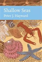 Shallow Seas (New Naturalist 131)