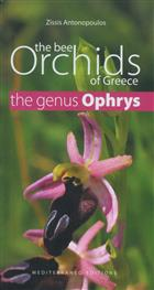 The Bee Orchids of Greece - The genus Ophrys