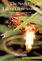The Secret Life of Glow-worms: Including the Lesser Glow-worm