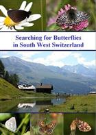 Searching for Butterflies in South West Switzerland