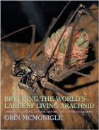 Breeding the Worlds Largest Living Arachnid: Amblypygid (Whipspider) Biology Natural History and Captive Husbandry
