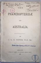 The Phaneropteridae of Australia and Polynesia