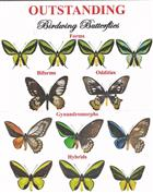 Outstanding Birdwing Butterflies