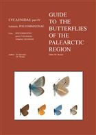 Guide to the Butterflies of the Palearctic Region: Lycaenidae 4:Subfamily Polyommatinae, Tribe Polyommatini, Genus Polyommatus, Subgenus Agrodiaetus