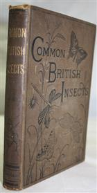 Common British Insects: Selected from the typical Beetles, Moths, and Butterflies of Great Britain