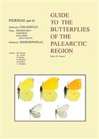 Guide to the Butterflies of the Palearctic Region: Pieridae 3: Coliadinae: Rhodocerini, Euremini, Coliadini (Gonepteryx and others) & Dismorpiinae (Leptidea)