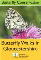 Butterfly Walks in Gloucestershire