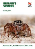 Britain's Spiders: A Field Guide