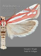 Moths of America North of Mexico 9.5: Pelochrista Lederer of the contiguous United States and Canada (Lepidoptera: Tortricidae: Eucosmini)