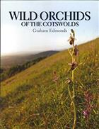 Wild Orchids of the Cotswolds