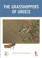 Grasshoppers of Greece
