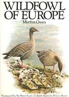 Wildfowl of Europe