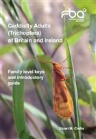 Caddisfly Adults (Trichoptera) of Britain and Ireland: Family level keys and introductory guide