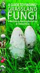 A Guide to finding Grassland Fungi in Berkshire, Buckinghamshire and Oxfordshire