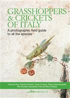 Grasshoppers and crickets of Italy: A photographic field guide to all the species