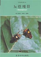 Economic Insects of Korea 18: Hemiptera