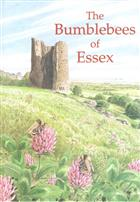 The Bumblebees of Essex