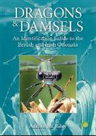Dragons and Damsels: An identification guide to the British and Irish Odonata