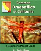 Common Dragonflies of California: A Beginner's Pocket Guide