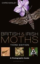 British and Irish Moths A photographic guide
