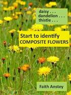 Start to Identify Composite Flowers: Daisy, Dandelion, Thistle