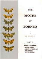 The Moths of Borneo 14: Noctuidae: Euteliinae, Stictopterinae, Plusiinae, Pantheinae