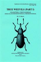 True Weevils 1: Coleoptera: Curculionidae (Raymondionyminae to Smicronychinae) (Handbooks for the Identification of British Insects 5/17b)