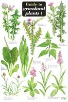 Guide to Grassland Plants 1 (Identification Chart)