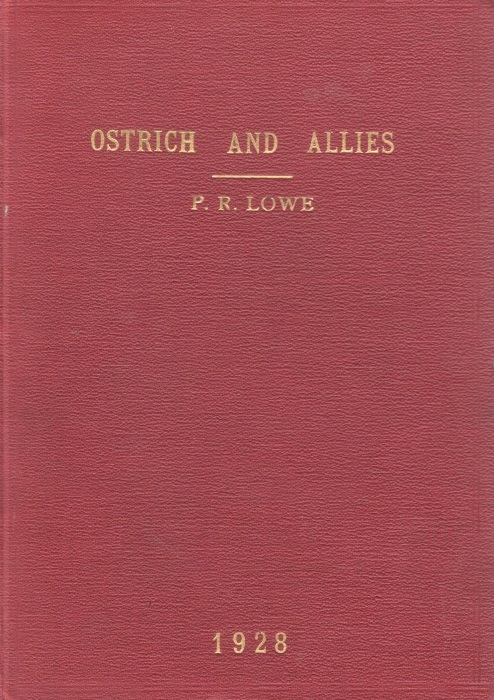 LOWE, P.R. - Studies and Observations bearing on the Phylogeny of the Ostrich and Allies
