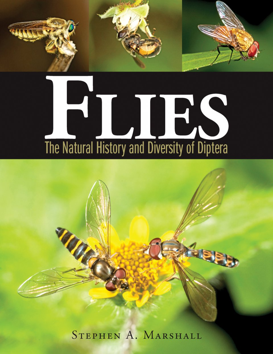 MARSHALL, S.A. - Flies: The Natural History and Diversity of Diptera